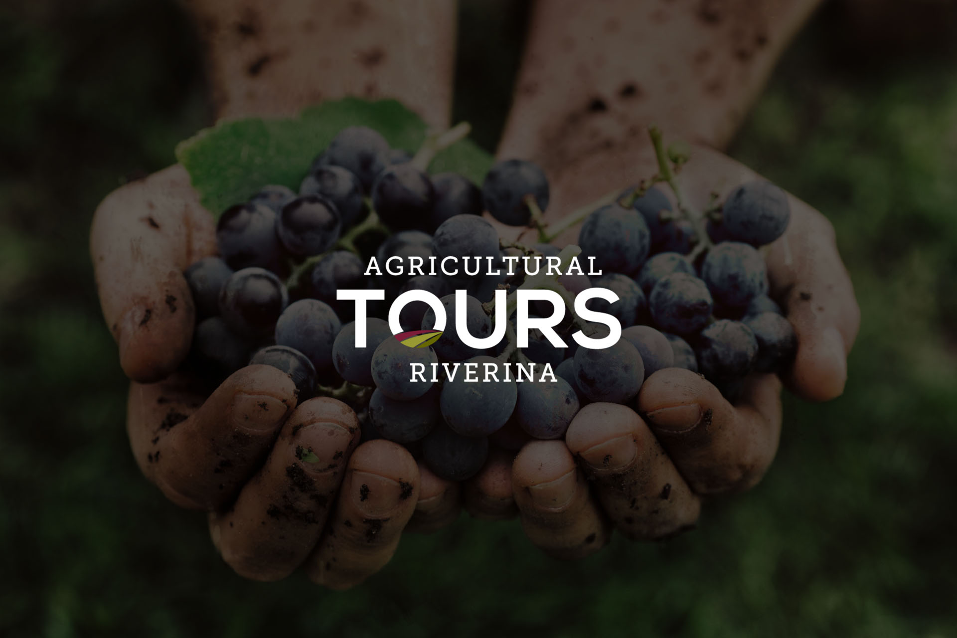 Agricultural Tours Riverina branding by Leysa Flores