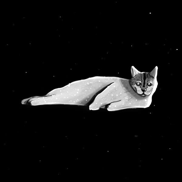 Cosmic cat illustration by Leysa Flores